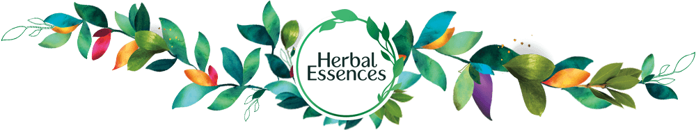 Hair Care And Styling Products Herbal Essences
