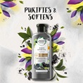 Herbal Essences Purifies & Softens