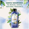 Gently Nourishes To Reveal Hair's Natural Radiance