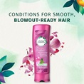 Herbal Essences Conditions For Smooth Blowout Ready Hair