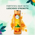 Fortifies Hair With Luscious Strength