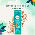 Restores End-to-End Radiance