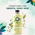Conditions For Smooth Shiny Hair