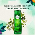 Clarifying Refresh That Clears Away Buildup