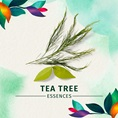 Herbal Essences Tea Tree Essences