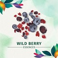 Herbal Essences Wild Berry Essences