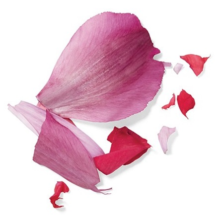 Herbal Essences Hibiscus Ingredient