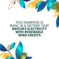 Renewable Wind Credits