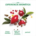 Herbal Essences Una Experiencia Aromática